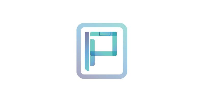 Praxis Engineering Logo 2